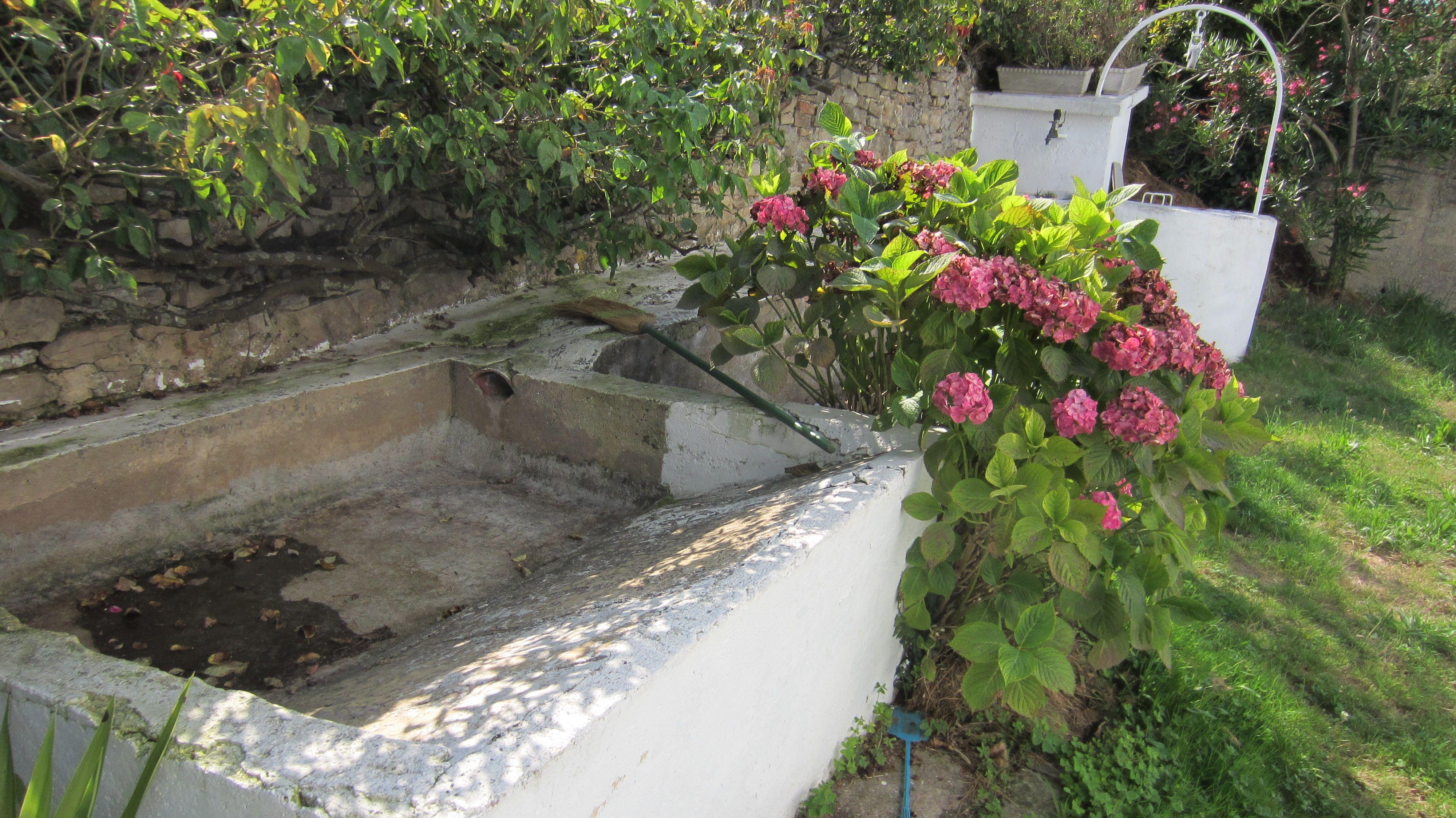 zona del jardin, pozo y lavadero