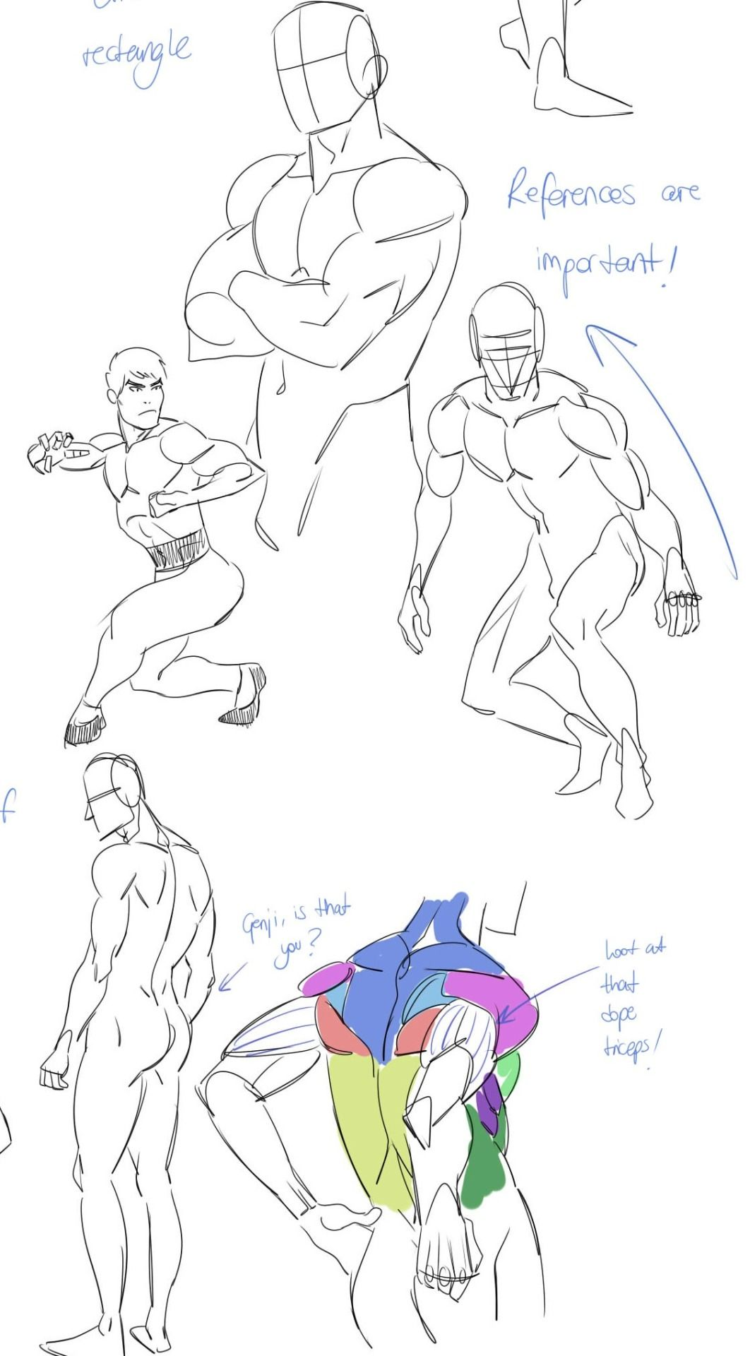 """chococri: """" Did a miniguide of male anatomy for a friend. A lot of ..."""