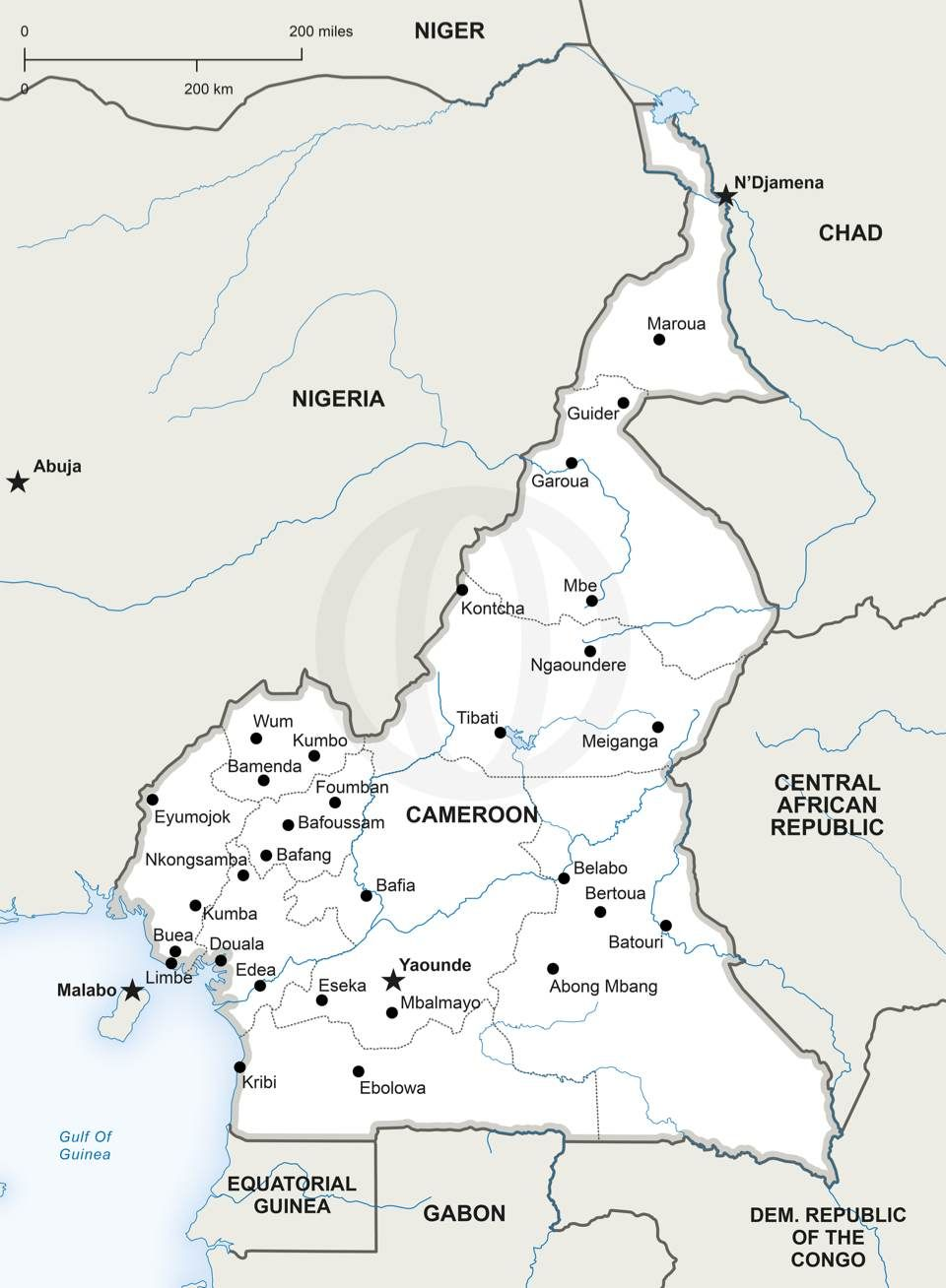 Vector Map Of Cameroon Political - High Resolution Us Map Download