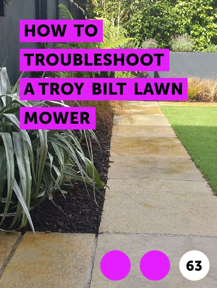 How to Troubleshoot a Troy Bilt Lawn Mower Christmas cactus