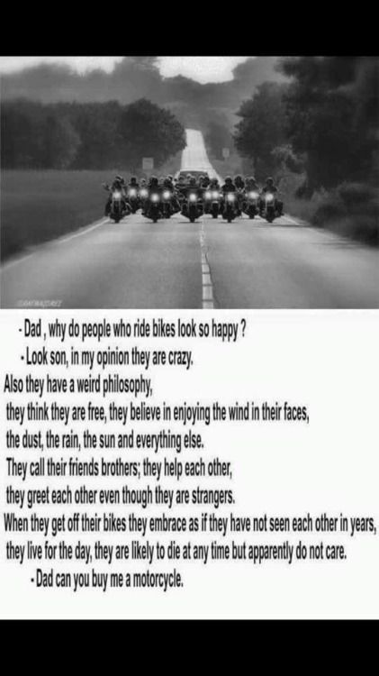 Biker Quotes Top 60 BEST Biker Quotes And Sayin's This Is My New Quotation Of B S Custom