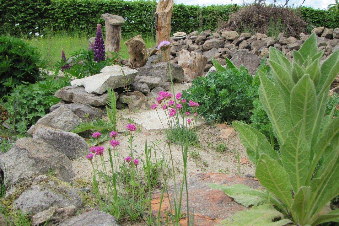 Zum Weltbienentag So Werden Sie Wildbienen Hotelier Lbv Naturgarten Garten Garten Pflanzen