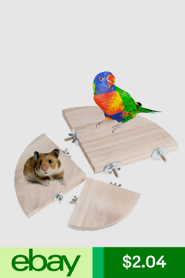 Perches Pet Supplies Ebay Pets Pet Birds Parrots Hamster