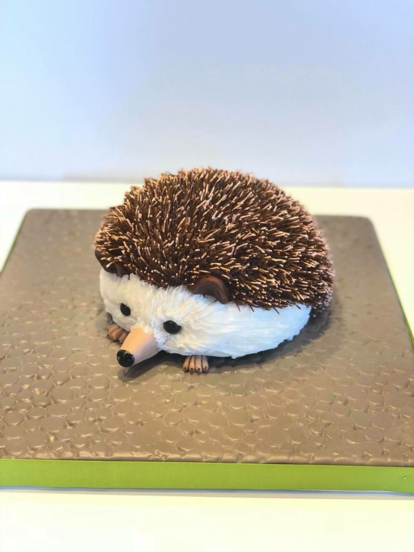 Sculpted cake - Rapid City, SD Sculpted hedgehog cake #sculptedcake #hedgehogcake #animalcake #hedgehog #designercakes #rapidcity #hedgehogcake