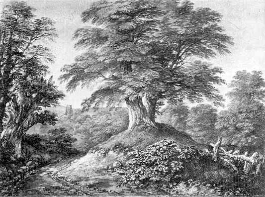 Image result for gainsborough beech trees at foxley