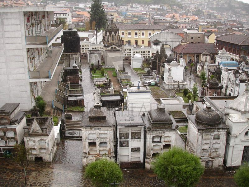 Cementerio de San Diego ( Foto de Natalia Cartolini @Lobitadelsur)