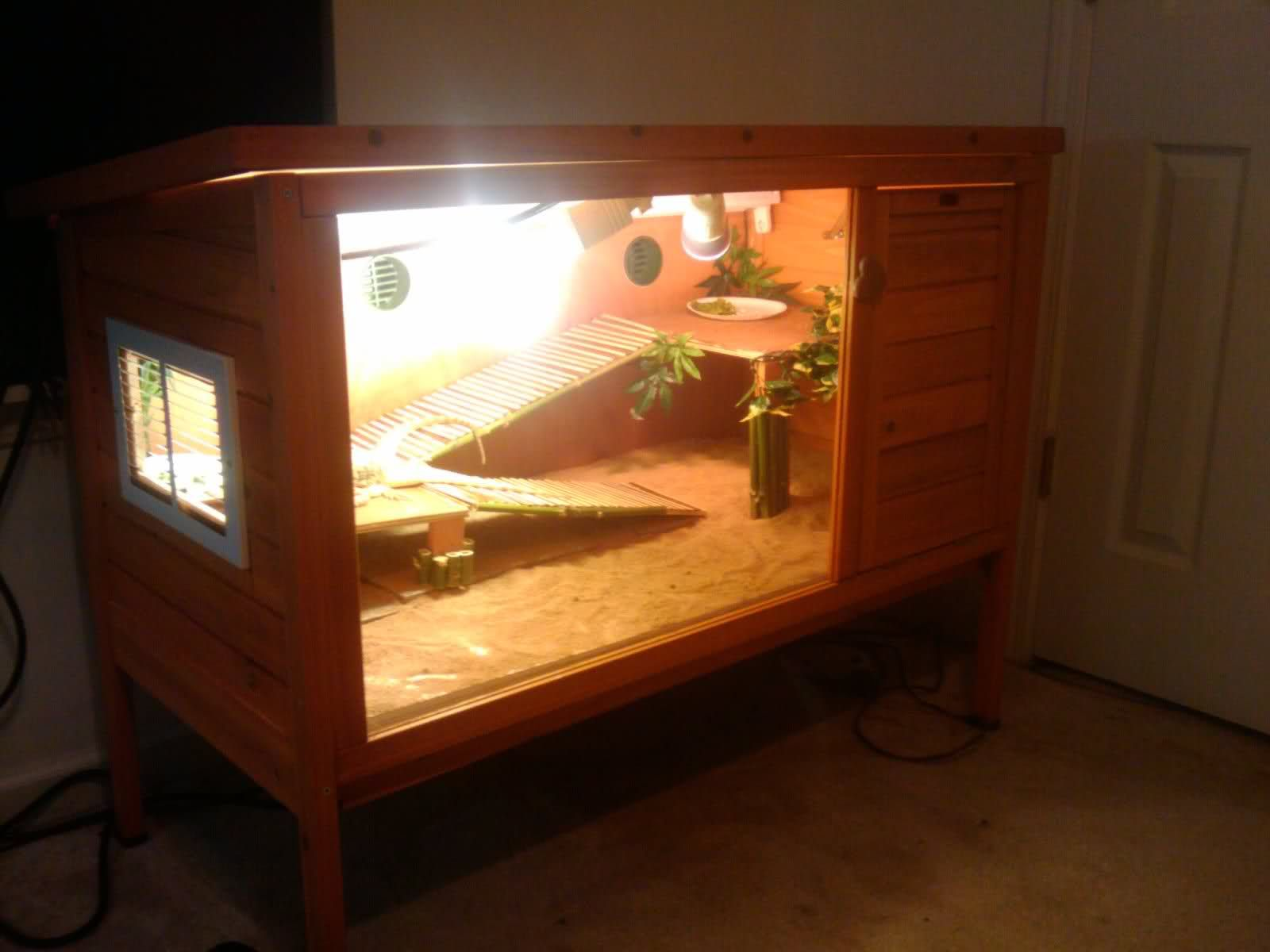 Bearded dragon enclosure bearded dragons pinterest for Diy guinea pig cages for sale