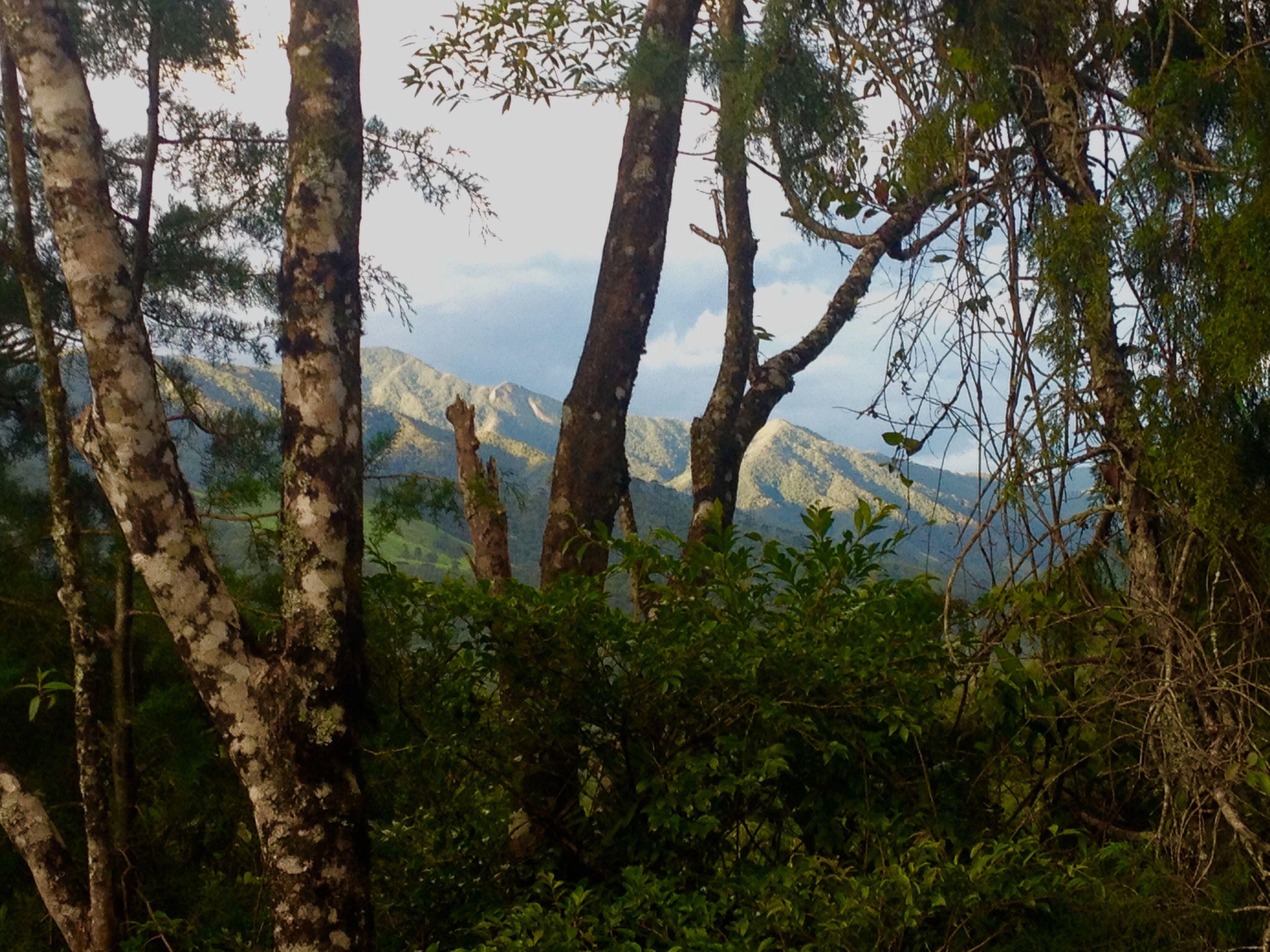 Visconde de Mauá / RJ (Foto: Daniel Salvador)