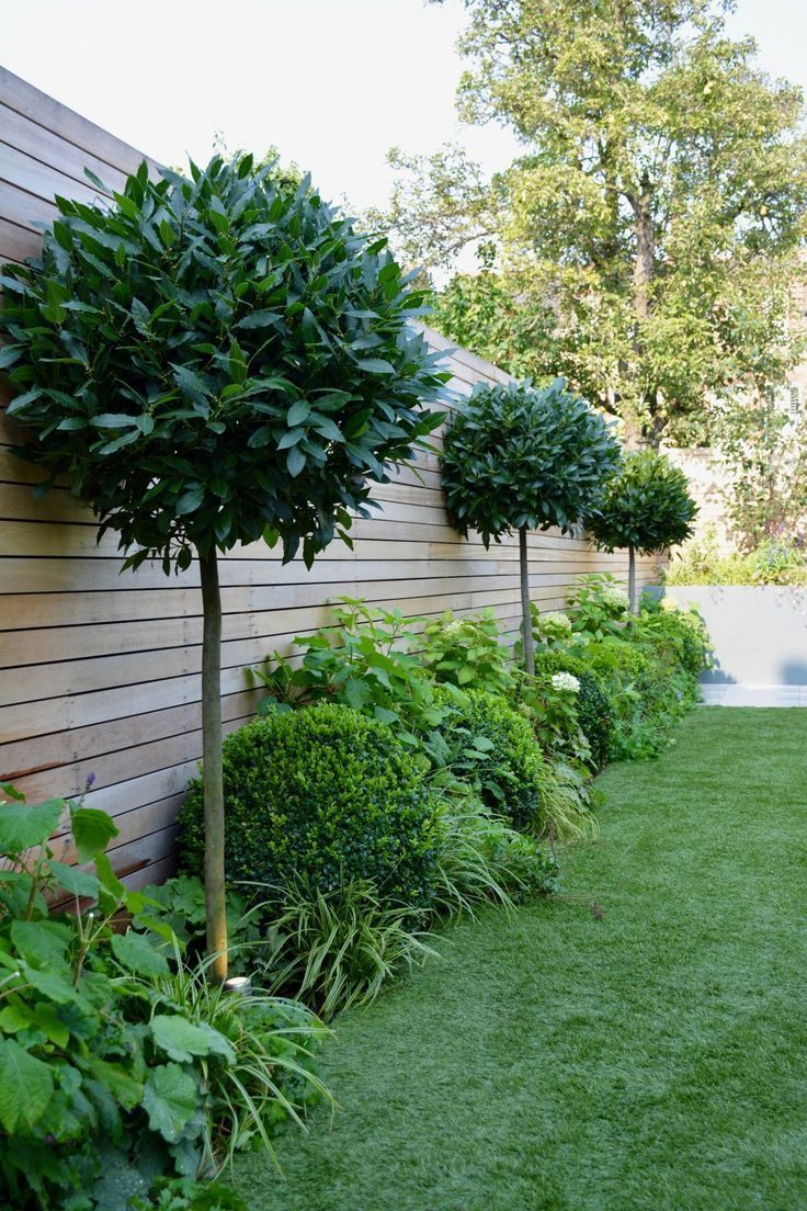 Photo of Balham London Tom Howard Gardens Backyard Concepts #Balham #Gardens #Gartenideen…