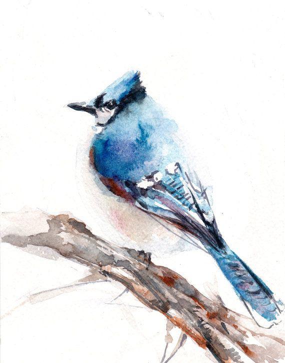 Aquarelle Art Print Geai Bleu Oiseaux Aquarelle Par