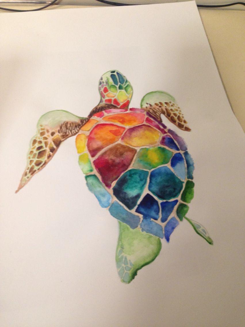 Watercolour Turtle Turtle Drawing Sea Turtle Art Turtle Painting