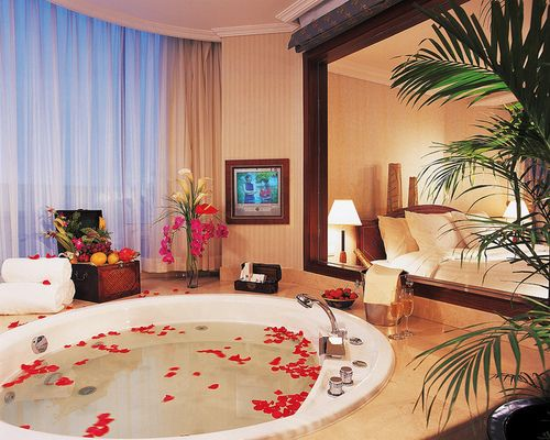 Master Bedroom Jacuzzi Designs jacuzzi tub in the master bedroom???? | decorating at home