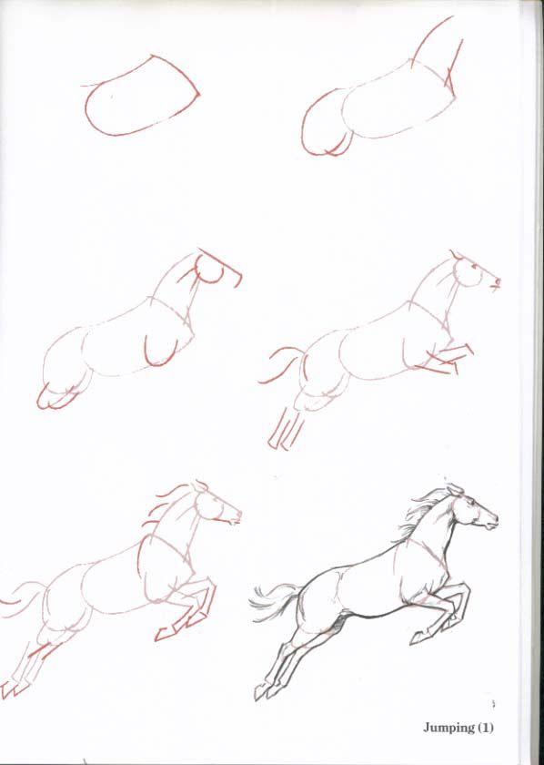 15 Best Horse Art Images