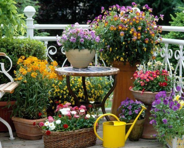 Elegant Windschutz Balkon Gestalten Ideen Pflanztöpfe Blumen Korb