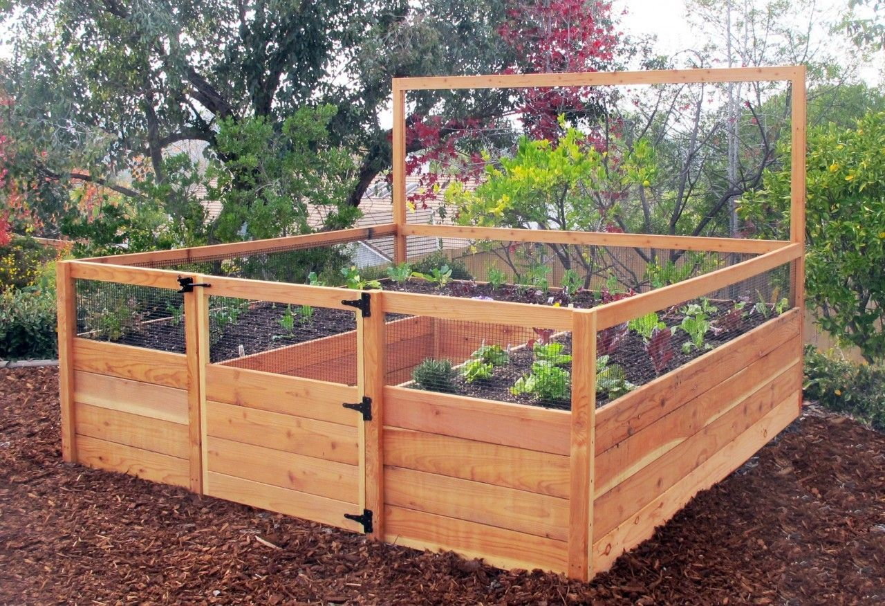 8\'X8\' Raised Bed Gated Garden Kit | Raised bed and Raising
