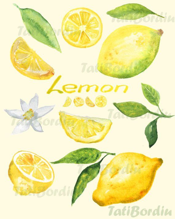 Lemon Watercolor Clip Art Clipart In 2019