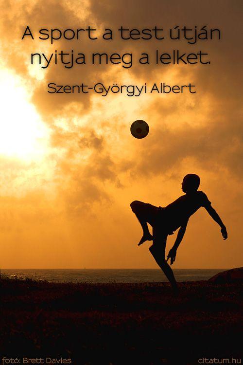 vicces sport idézetek Szent Györgyi Albert #idézet | Inspiration, Striker, Life is good
