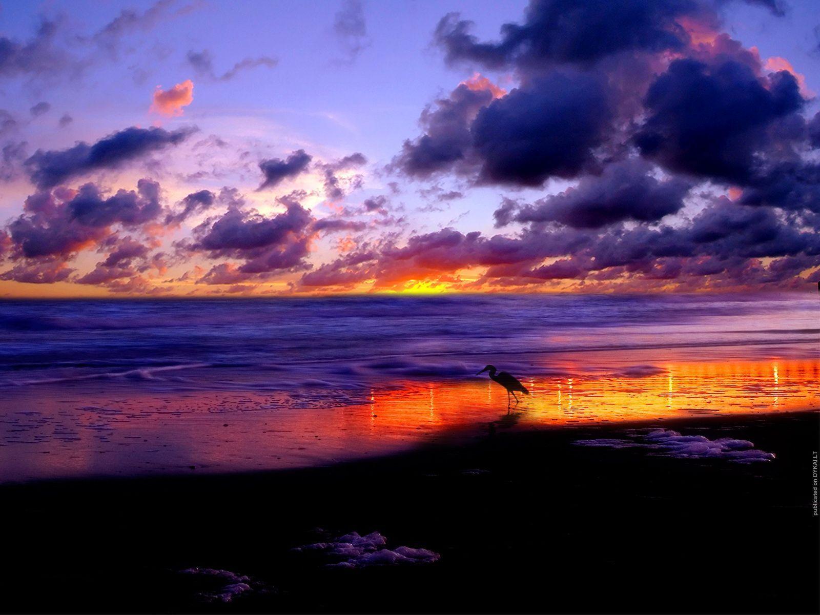 High Resolution Beach Sunset Wallpaper In Nature Scenery Desktop Wallpapers