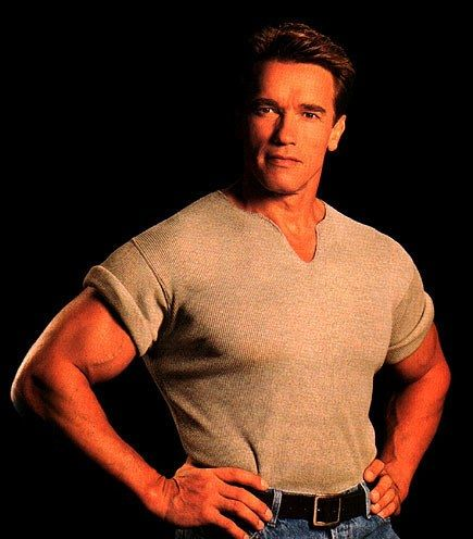 Arnold Schwarzenegger Fan Album Arnold Schwarzeneggeer