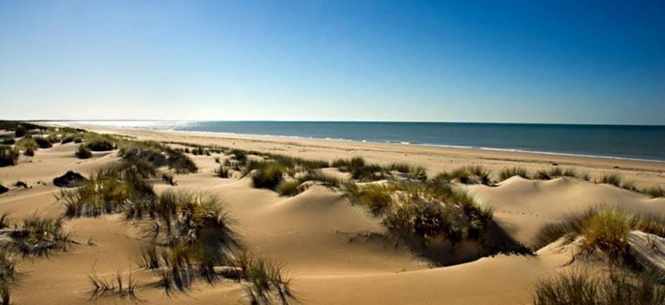 Panorámica de #Islantilla #Huelva #AndandoPorAndalucía