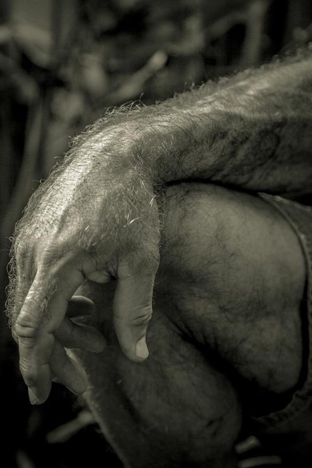 Pin de Sara Colombo en Hands | Pinterest | Hombres peludos, Piernas ...