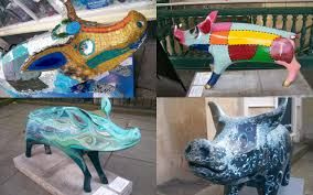 Image result for pigs in bath