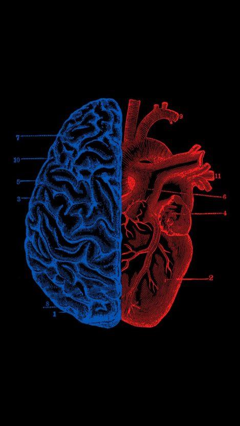 Heart Vs Brain Iphone Wallpaper Papeis De Parede Para Iphone Fotos De Enfermagem Papel De Parede Preto