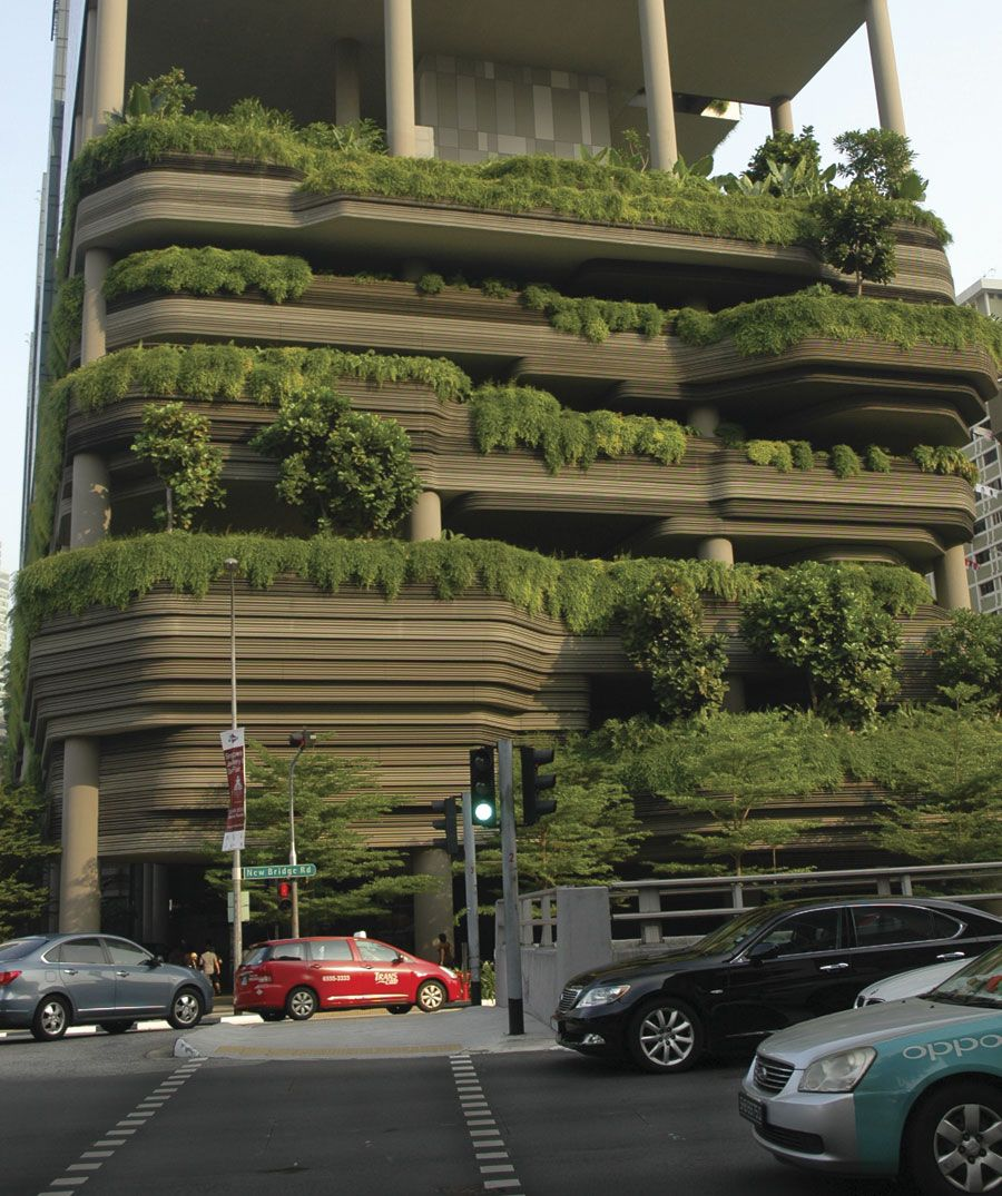 Singapore's quest to be known as the City in a Garden is