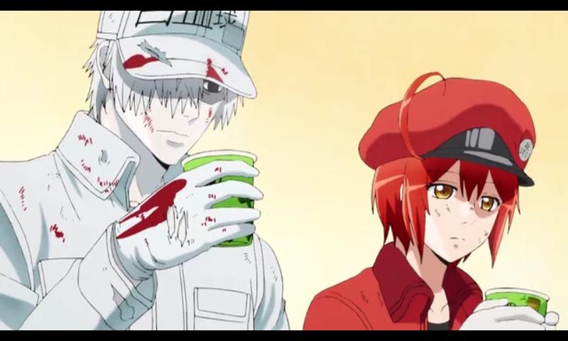 Yap kali ini admin bakal membahas mengenai anime yang