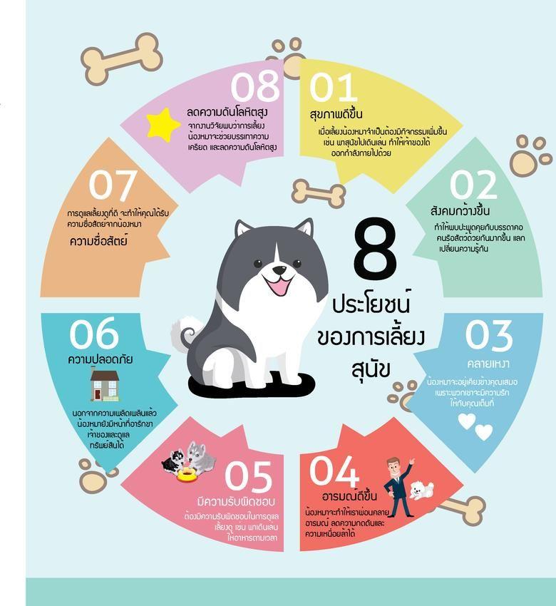 Infographics อ นโฟกราฟ ก กราฟ กด ไซน เรซ เม