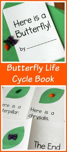 Butterfly Life Cycle Printable Book - an awesome way for pre- and emerging readers to create a book about butterflies. Science and a TON of early literacy skills wrapped up in one fun, simple book!