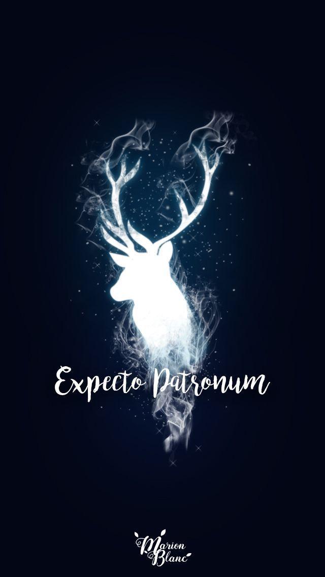 Harry Potter - Marion Blanc