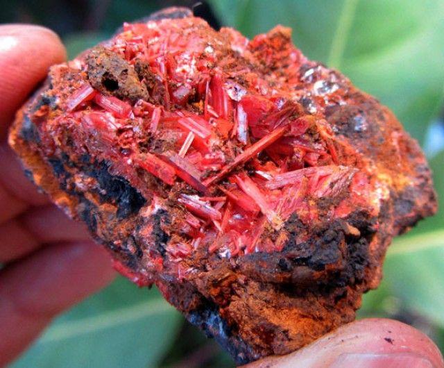 "AUSTRALIAN MINERAL ""CROCOITE"" 44 CTS FROM TASMANIA GG 1144  crocoite mineral specimen , australian mineral , australian specimen"