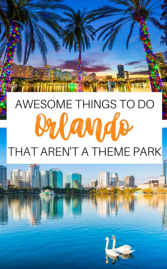 The 5 Best Natural Springs Near Orlando Impulse4adventure Florida Adventures Natural Springs In Florida Florida Travel Guide Florida Adventures