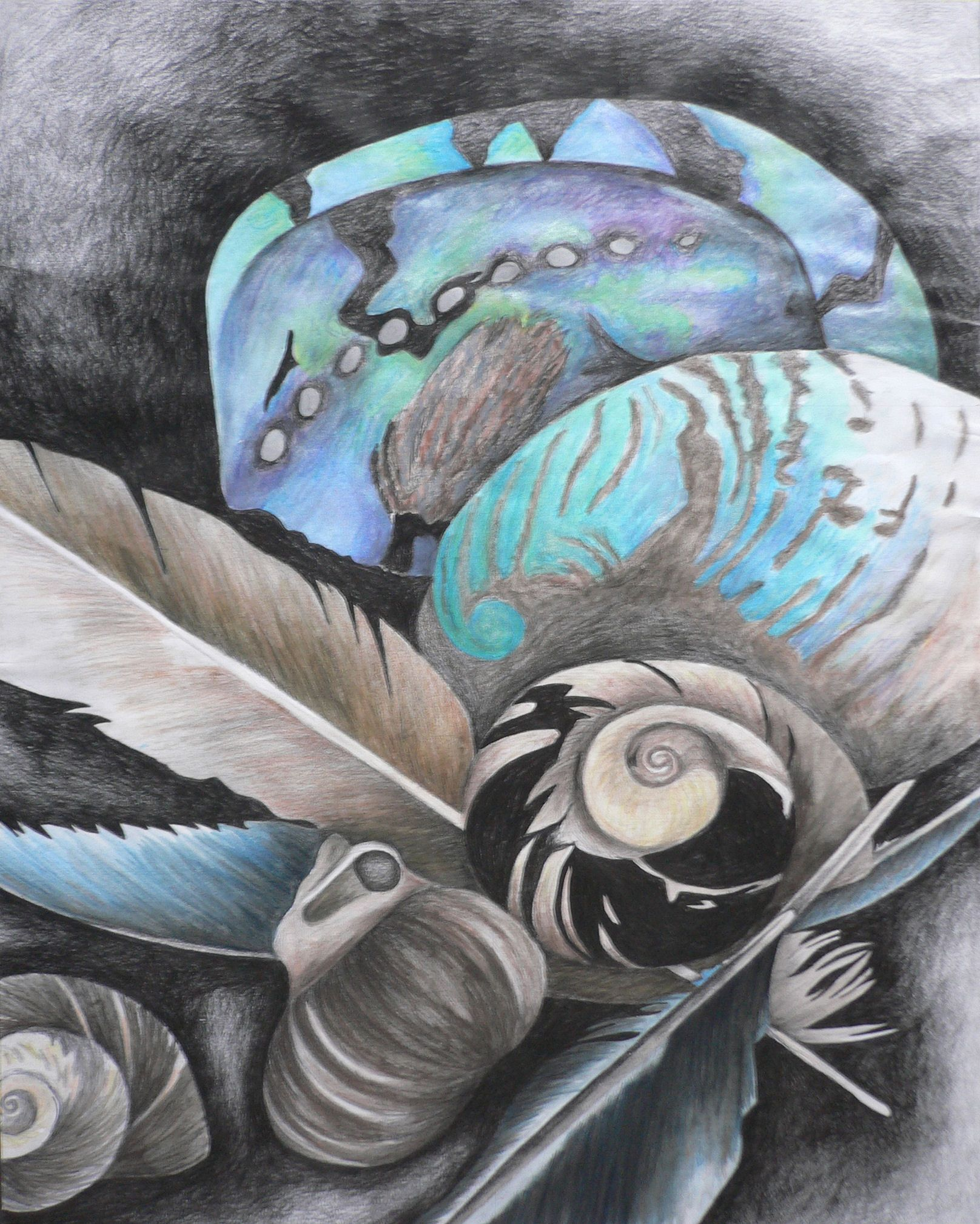 Still Life -- Mixed Media Drawing  Year 11 With Paua shell