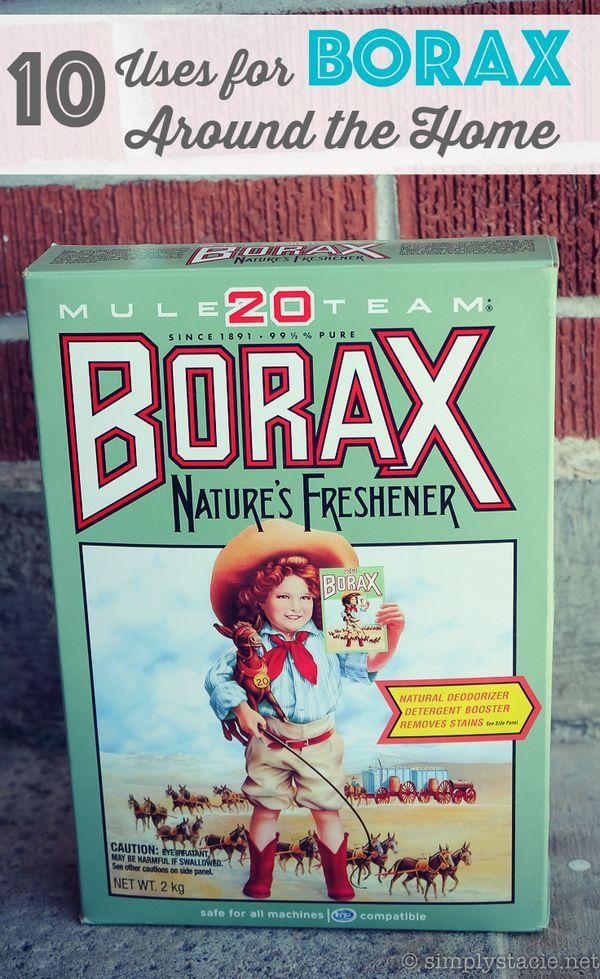 10 Uses for Borax Around the Home Borax uses, Diy