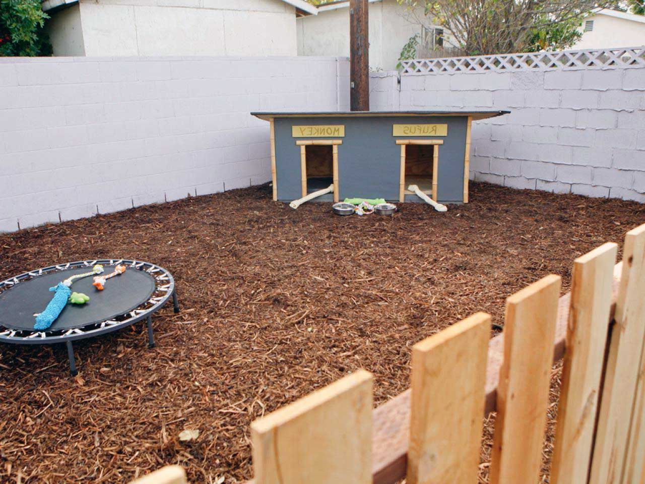 34 Cute dog yard landscaping Inspirations in 2020 ...