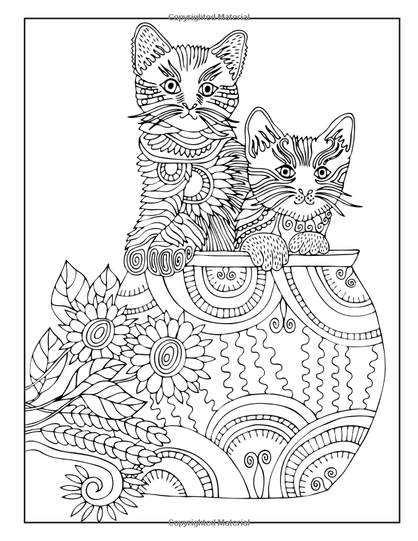 Amazon.com: Cat Coloring Book: An Adult Coloring Book for ...