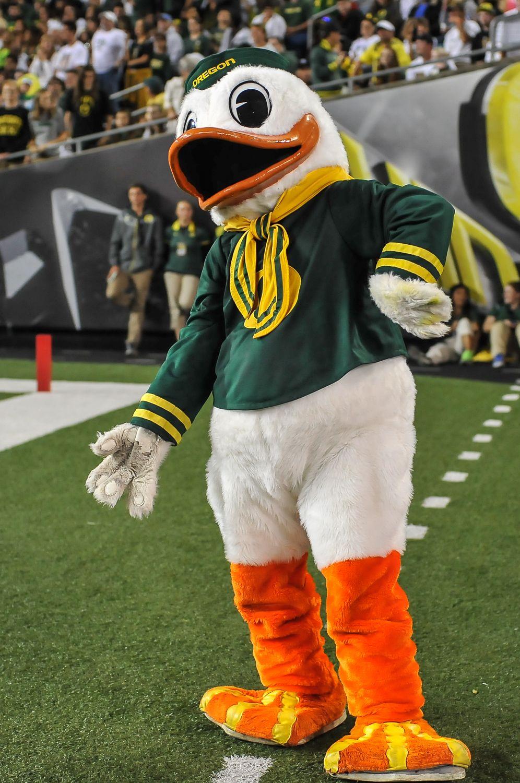 Puddles University Of Oregon Mascot Oregon Football University Of Oregon Uo Ducks