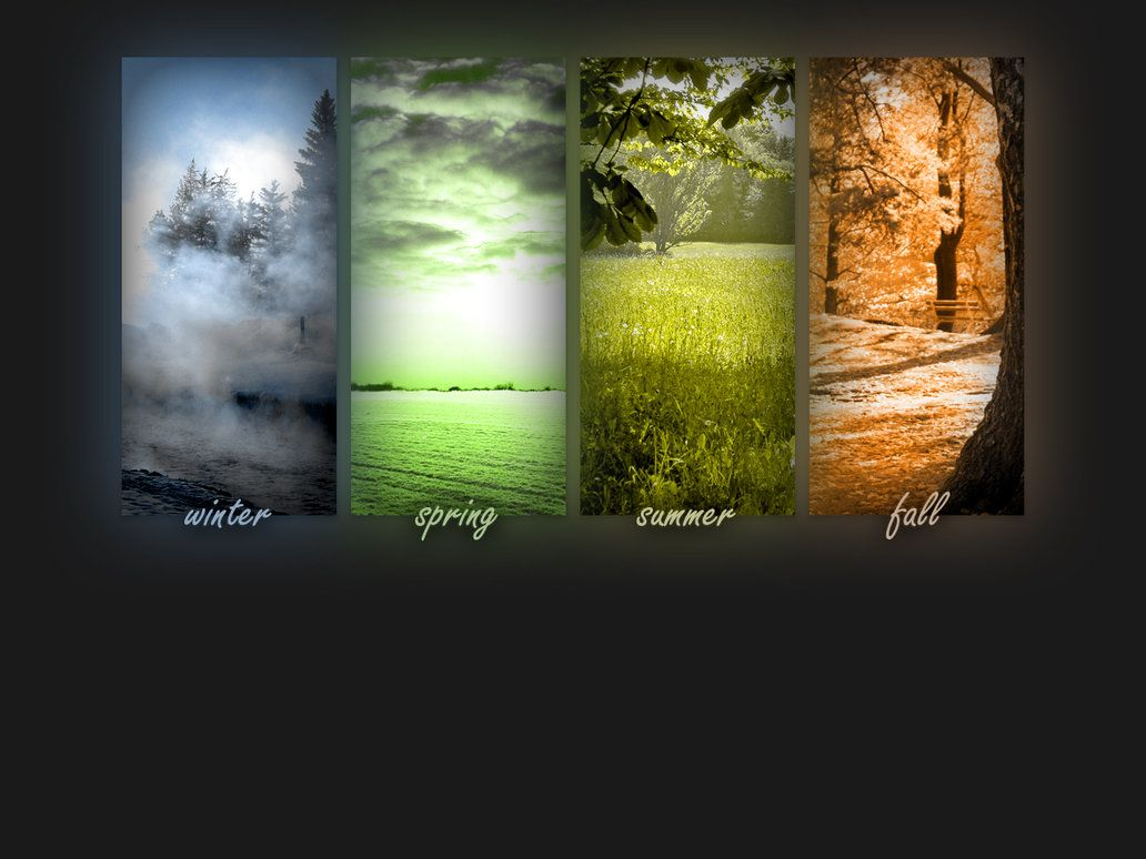 Seasons Four Seasons Wallpaper By Liquidplasmaflow On