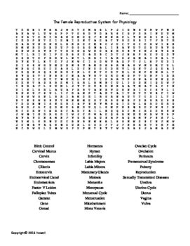 The Female Reproductive System Vocabulary Word Search For