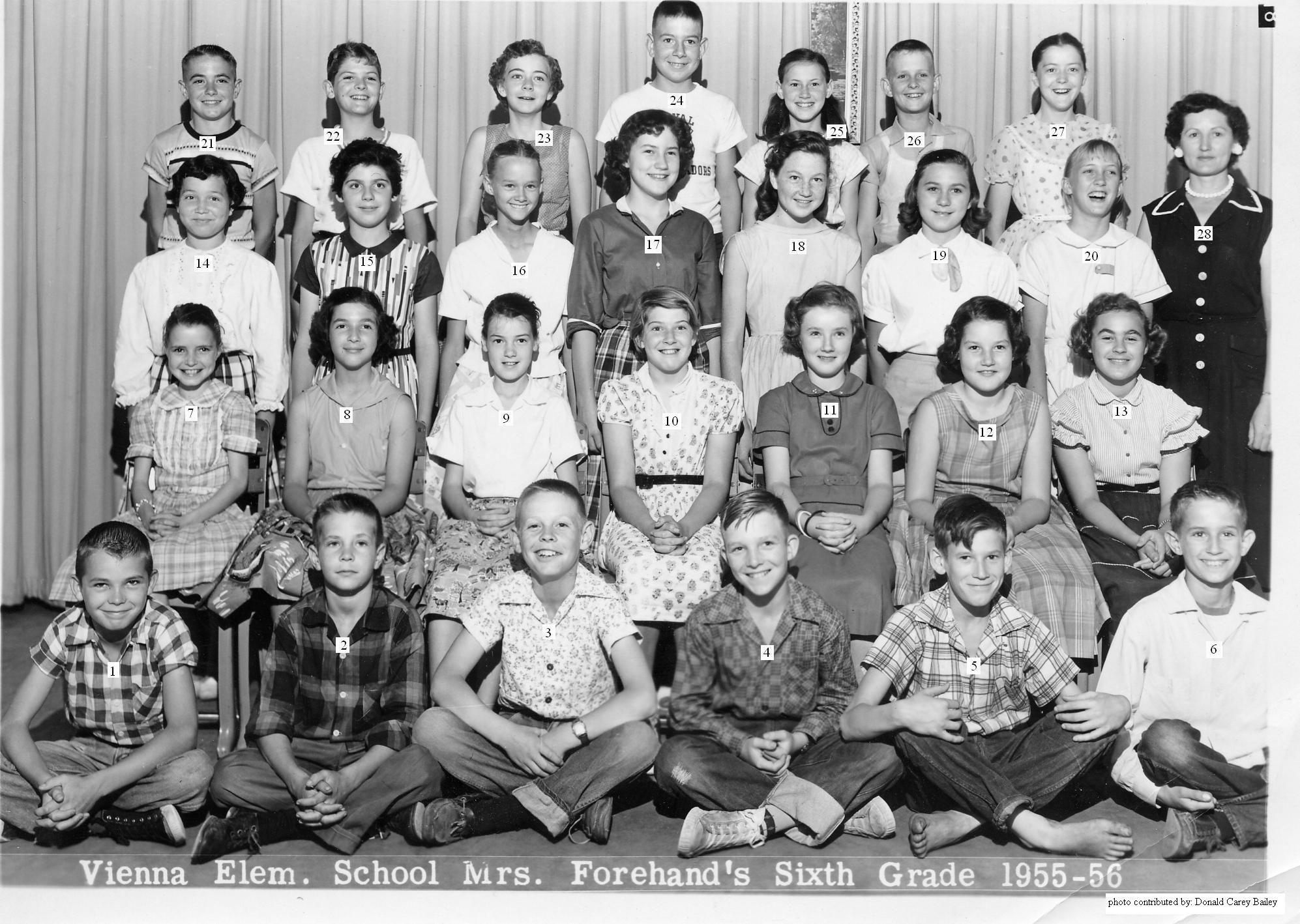 Elementary School Class 1950