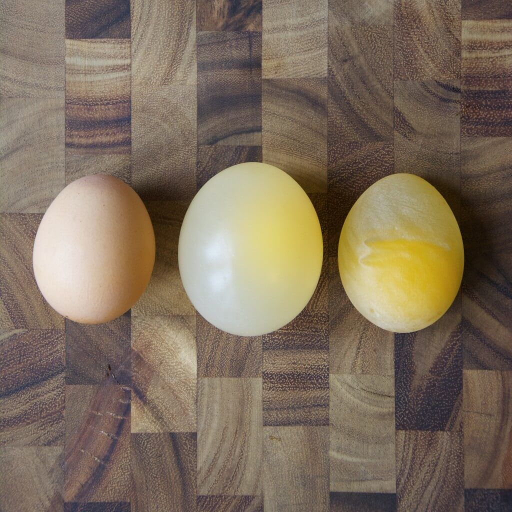 3 Insanely Cool Egg Experiments