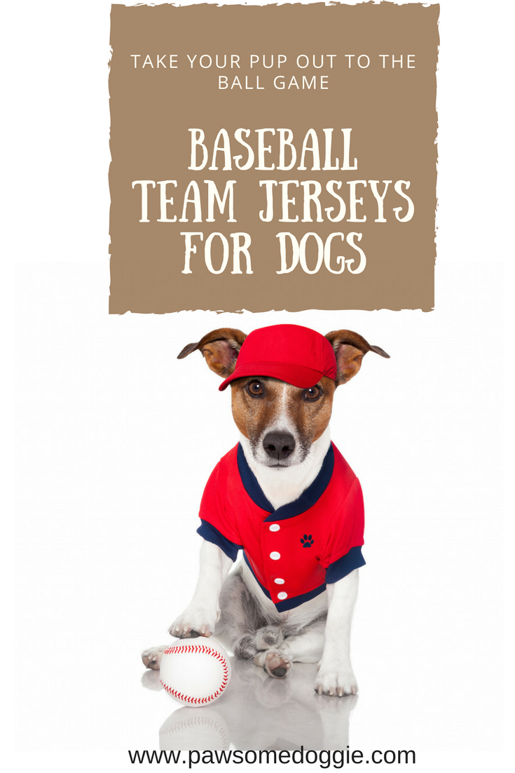Baseball Team Jerseys for Dogs Boxer breed, Dog lovers