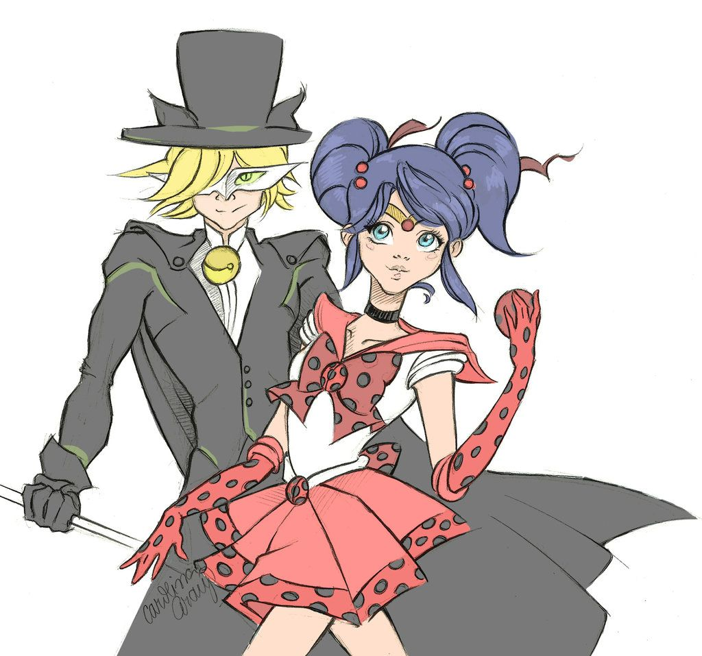 Sailor Ladybug and Tuxedo Cat by csfaraujo.deviantart.com on @DeviantArt