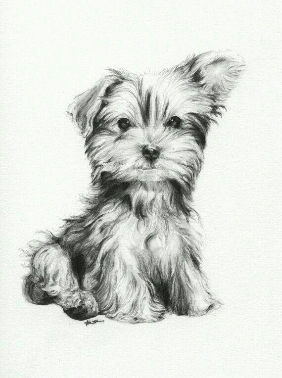 Pinterest: Lookingthestars ❁ | Arte | Pinterest | Zeichnungen ...