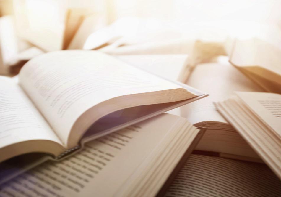 ce sont les romans les plus addictifs
