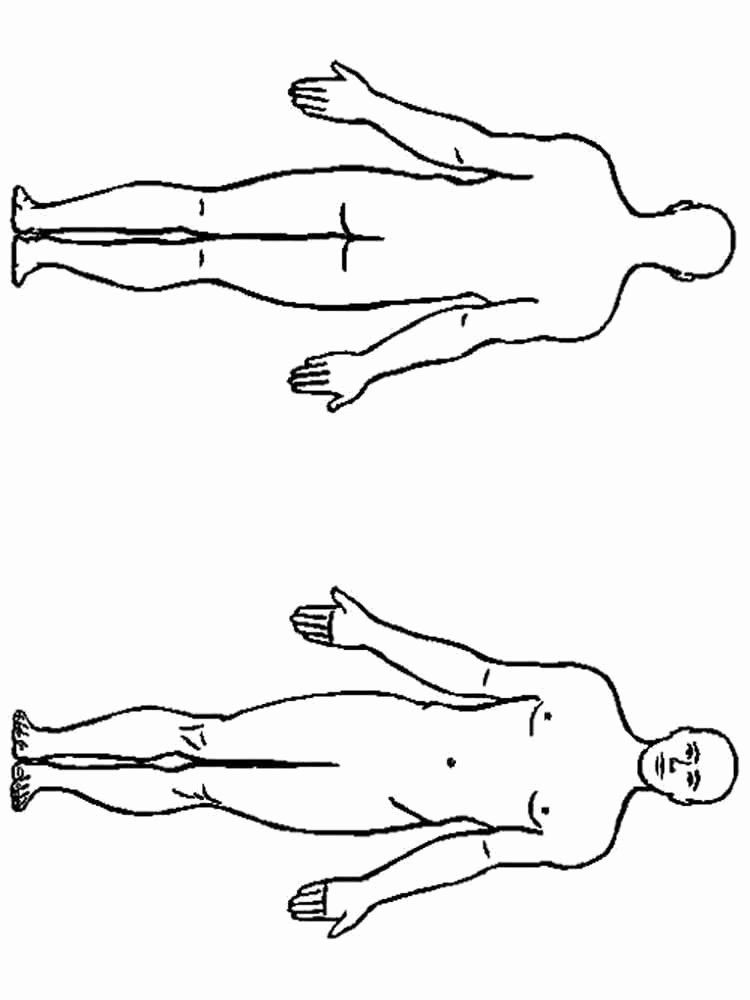 Human Body Coloring Pages Body Coloring Pages Human Outline Page System Sheets  Free Printable Human Body Coloring Pages | 1000x750
