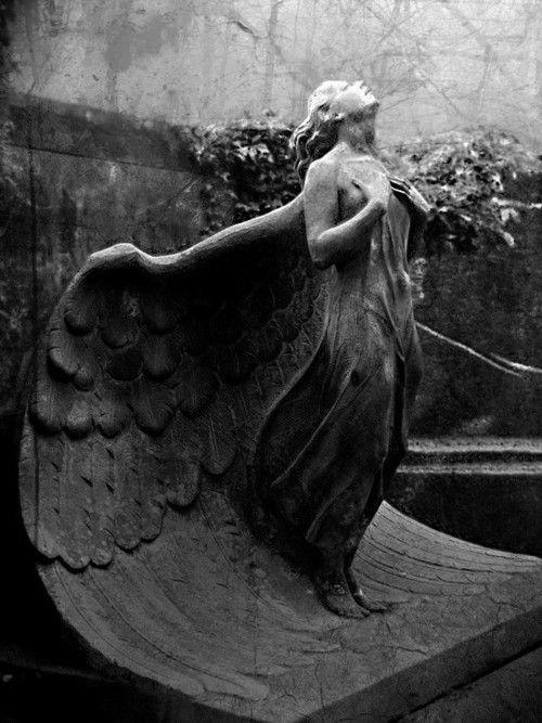 Angel Wings!!
