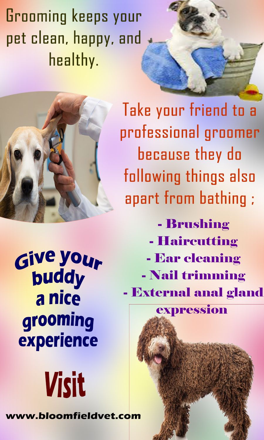 Lakewood, CA vet explains the importance of grooming